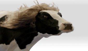 Thấy mấy bác bàn luận về HairWorks rôm rả quá, thôi...