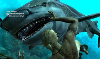 Sở thích của mình là săn cá mập :D